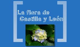 La flora de Castilla y León