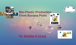 Using Banana Peels in the Production of Bio-Plastic