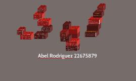 Abel Rodriguez 22675879