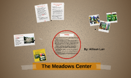 The Meadows Center