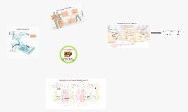 Copy of Método de participación patrimonial