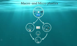 Macro -and Micro plastic