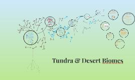 Tundra & Desert Biomes