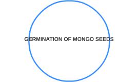 GERMINATION OF MONGGO SEED