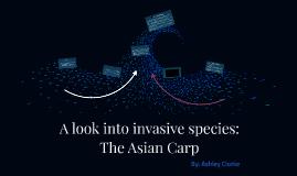 A look into invasive species: