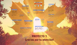 Copy of Proyecto 1