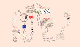 Copy of lipidos