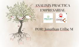 analysis PRACTICA EMPRESARIALI