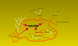 Evolution concept map