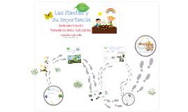 Sede Cedritos Preescolar los Andes