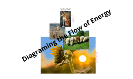 Diagraming the Flow of Energy