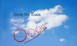 Kevin the Koala Carbon Cycle