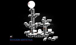 DIVICION SINTETICA