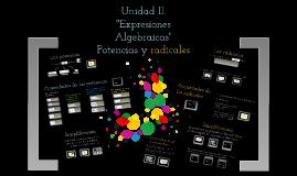Copy of Copy of Expresiones Algebraicas:Potencias y radicales