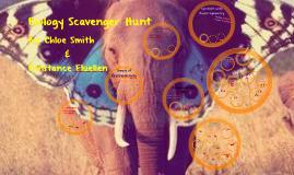 Biology Scavenger Hunt