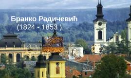 Бранко Радичевић