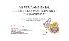 VII FERIA AMBIENTAL