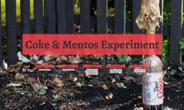 Coke & Mentos Experiment