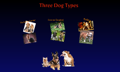 Three Dog Types
