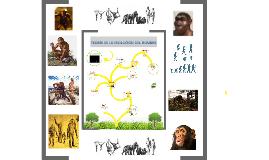 Copy of TEORIA DE LA EVOLUCION DEL HOMBRE