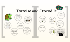 Tortoise and Crocodile
