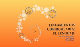 3. Concepción del lenguaje