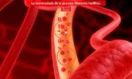 La homeostasis de la glucosa. Diabetes mellitus.