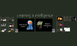 Psych - Learning & Intelligence