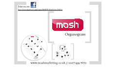 Copy of MASH Organogram