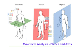 Copy of Copy of Movement Anaylsis - Planes and Axes