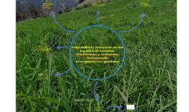 Adaptabilidad y producción de dos leguminosas forrajeras,