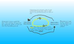 Curcular Flow Model