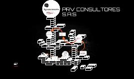 Copy of PRV CONSULTORES S.A.S