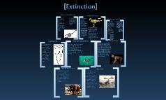 Extinction Project