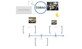 HISTORIA DEL COBAO
