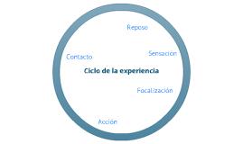Ampliación del Ciclo de la Experiencia