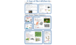 Copy of AP Bio- Cells 2:  Matter & Energy Processing.
