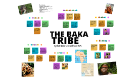 The Baka Tribe: Group Presentation: Humanities