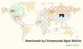 Americanah by Chimanda Ngozi Adiche