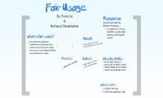 Fair Usage