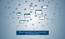 Roles and responsibilities of key professionals on