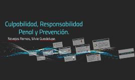 Culpabilidad, Responsabilidad penal y prevención.