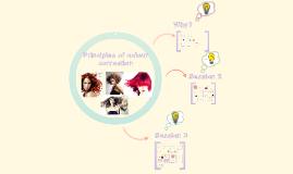 Copy of CHANGE HAIR COLOUR USING BASIC TECHNIQUES
