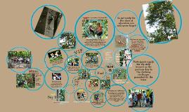 Copy of Outdoor Adventure Education