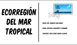 Copy of MAR TROPICAL - ECORREGIONES PERUANAS