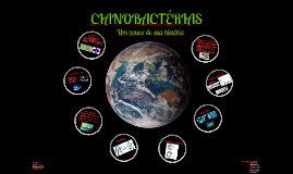 Cianobacterias final