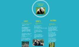 all about pandas and how they need help