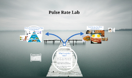 Copy of Pulse Rate Lab