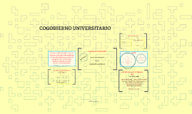 COGOBIERNO UNIVERSITARIO