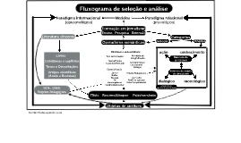 Fluxograma de seleção e análise
